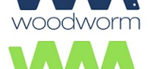 news-woodworm colori